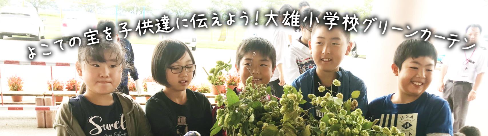 大雄小学校グリーンカーテン写真1